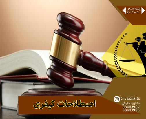 وکیل پایه یک در بیان اصطلاحات کیفری